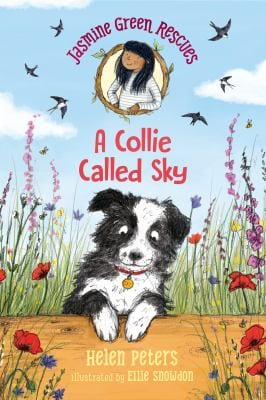 a collie named sky book cover image with link to catalog record